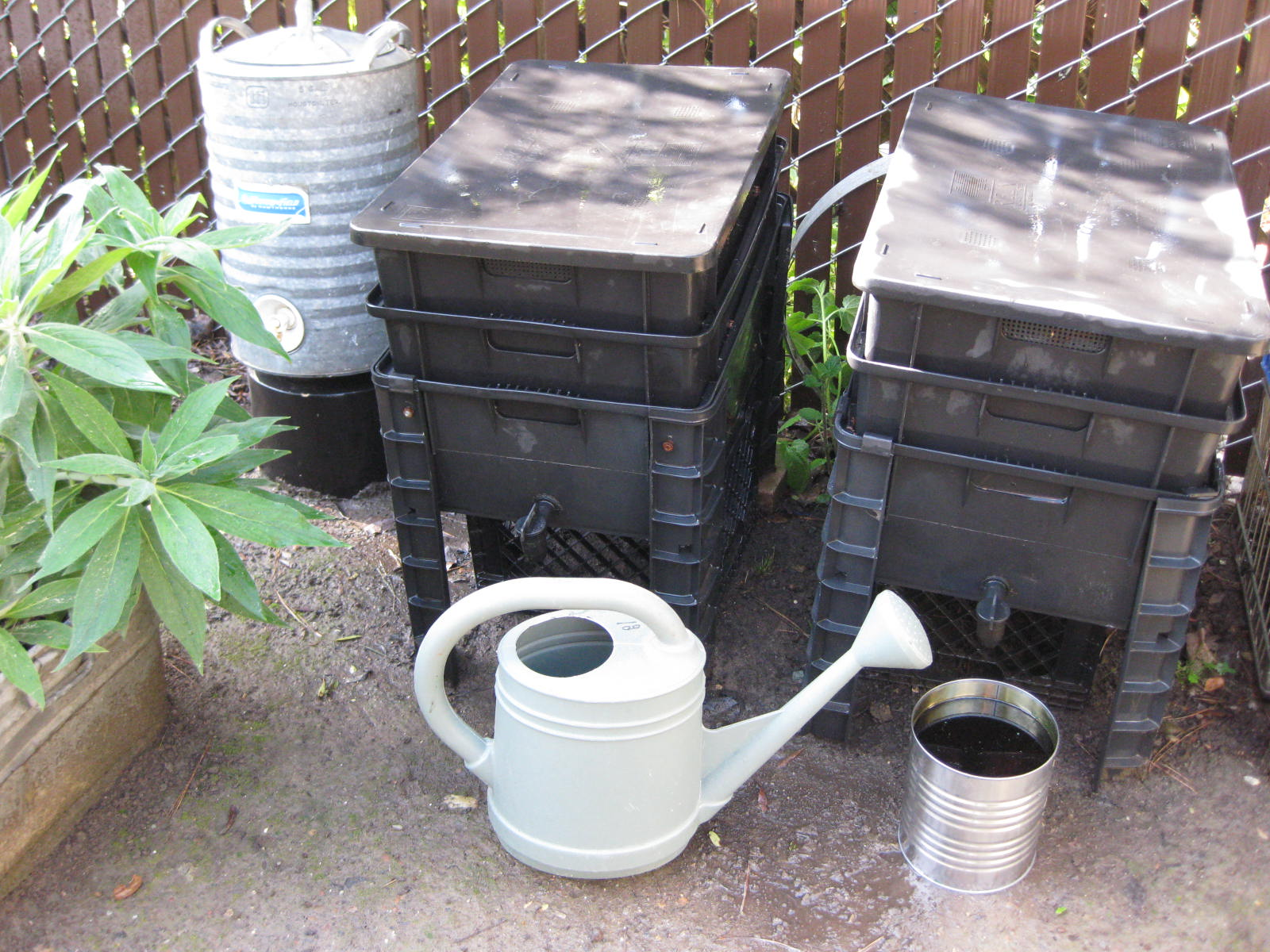 Worm Composting for Beginners – Central Coast Gardening