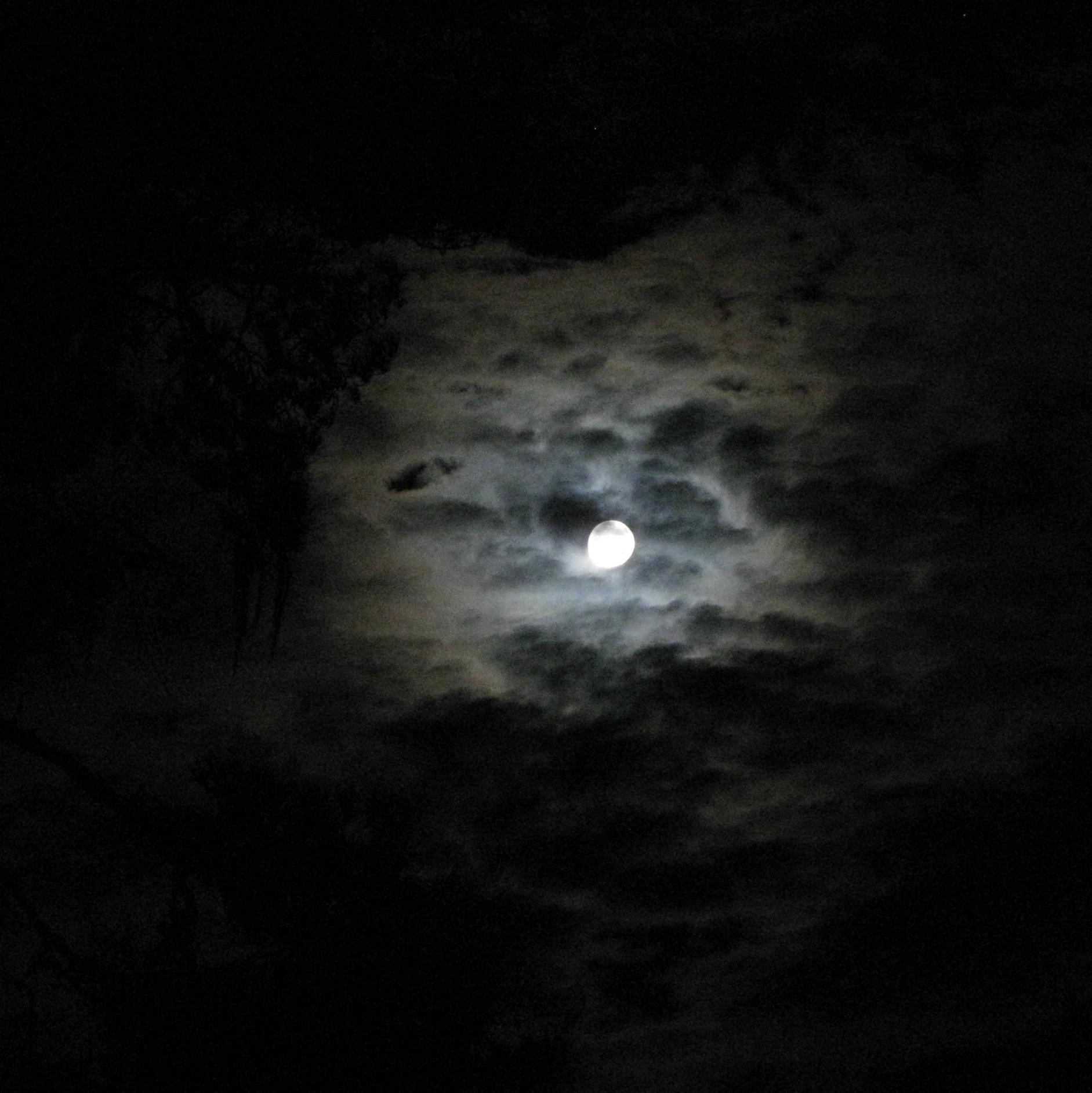 Moon0009