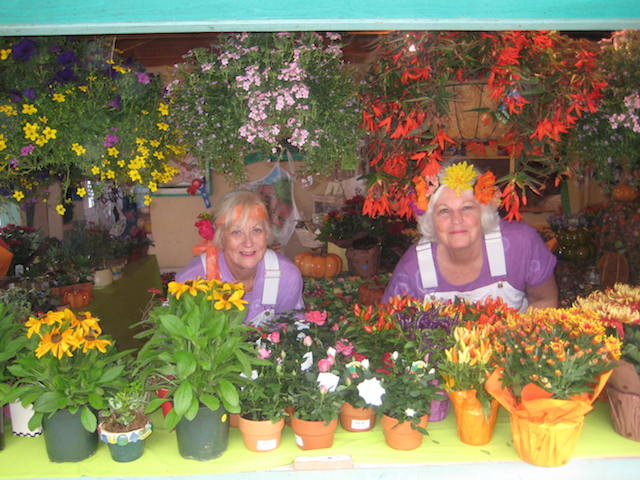 Cambria Garden Club members sell potted plants and flowers.